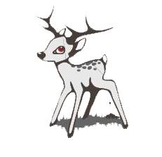 logo_jungwild_frei